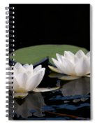 White Water-lily 8 Spiral Notebook