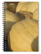 White Yellow Pumpkins Spiral Notebook