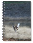 Whitetail Abstract Spiral Notebook