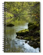 Whitewater River Spring 11 Spiral Notebook