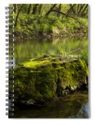 Whitewater River Spring 12 Spiral Notebook