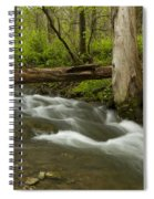 Whitewater River Spring 18 Spiral Notebook