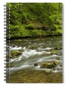 Whitewater River Spring 8 A Spiral Notebook
