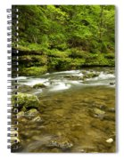 Whitewater River Spring 8 C Spiral Notebook
