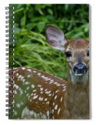 Who Are You Spiral Notebook