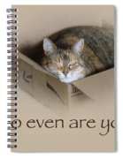 Who Even Are You - Lily The Cat Spiral Notebook