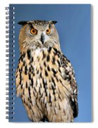 Who Spiral Notebook