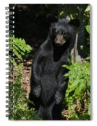 Whose Coming To Visit? Spiral Notebook