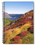 Wicklow Way, Co Wicklow, Ireland Long Spiral Notebook
