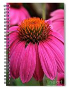 Wild Berry Purple Cone Flower Spiral Notebook