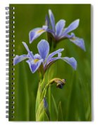 Wild Blue Flag Iris Spiral Notebook