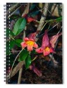 Wild Crossvine Spiral Notebook