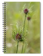 Wild Garlic - Allium Vineale Spiral Notebook