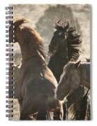 Wild Horse Battle Spiral Notebook