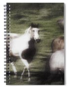 Wild Horses On The Move Spiral Notebook