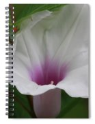 Wild In Florida Spiral Notebook