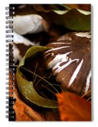 Wild Mushroom Spiral Notebook