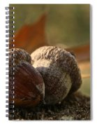 Wild Nuts Spiral Notebook