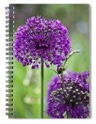 Wild Onion Flower Spiral Notebook