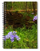 Wild Phlox In The Woodlands Spiral Notebook