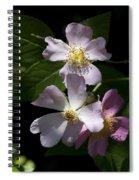 Wild Pink Rambling Rose Spiral Notebook