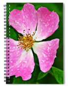 Wild Purple Spiral Notebook