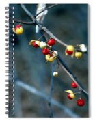 Wild Red Berries Out Of The Shell Spiral Notebook