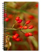 Wild Red Berry Reflections Spiral Notebook