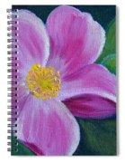 Wild Rose Study 6 Spiral Notebook