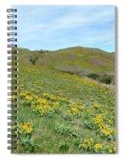 Wild Sunflowers 2 Spiral Notebook