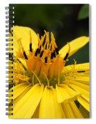 Wild Thing Spiral Notebook