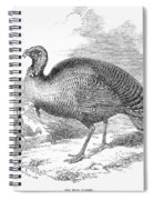 Wild Turkey, 1853 Spiral Notebook