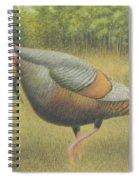 Wild Turkey Spiral Notebook