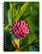 Wild Weed Spiral Notebook