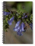 Wildflower Beauty Spiral Notebook