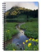 Wildflower Stream Spiral Notebook