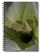 Wildflower Window Spiral Notebook