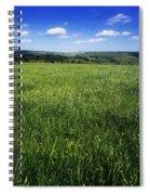 Wildflowers On A Landscape, Connemara Spiral Notebook