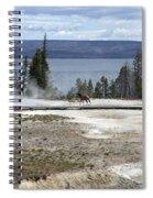 Wildlife In Yellowstone Spiral Notebook