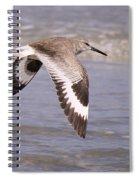 Willet In Flight Spiral Notebook