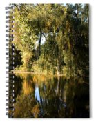 Willow Mirror Spiral Notebook