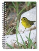 Wilsons Warbler By The Stream Spiral Notebook