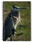 Wind Blown Great Blue Heron Spiral Notebook