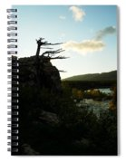 Wind Blown Tree At Many Glacier Spiral Notebook