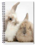 Windmill-eared Rabbits Spiral Notebook