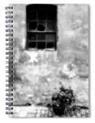 Window And Sidewalk Bw Spiral Notebook