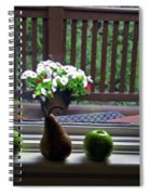 Window Sill 4 Spiral Notebook
