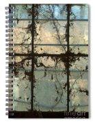 Window Vines Spiral Notebook