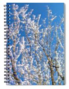 Winds Upon The Branchs Spiral Notebook