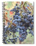 Wine Grapes In Provence Spiral Notebook